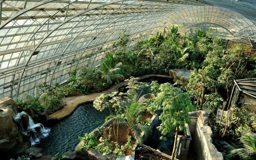 Vincennes Greenhouse