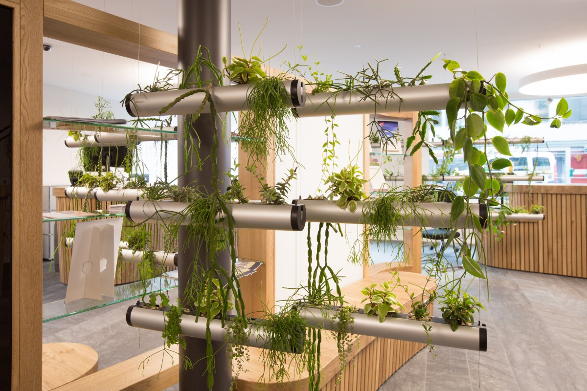 Pendularis – floating indoor garden- 1st Price | European Interior ...
