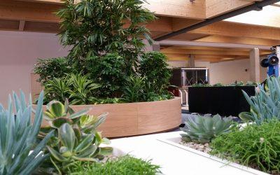 Sky Central Interior Landscaping Scheme
