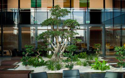 UBS Interior Planting Scheme