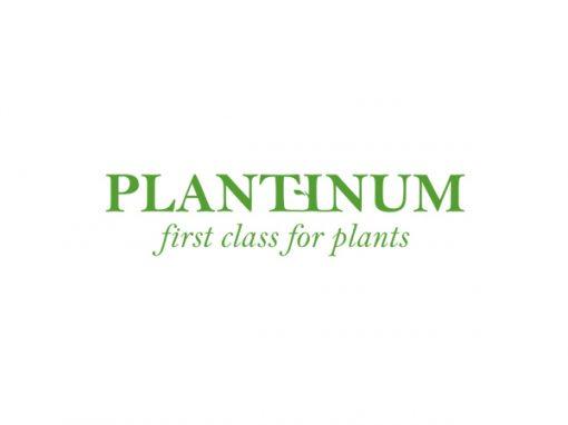 Plantinum