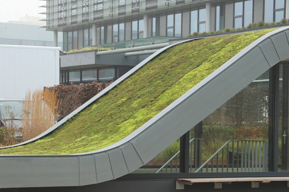 How do we make our buildings green?