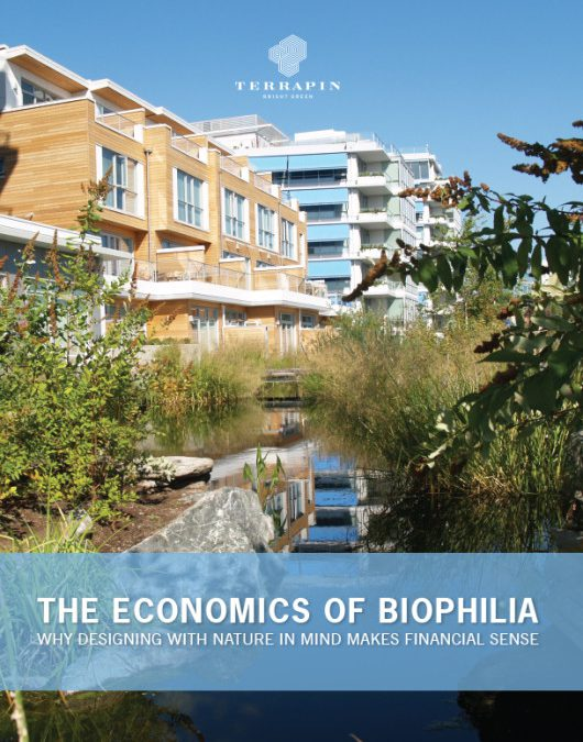 Why biophilic design always pays off