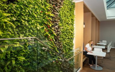 Multi-Story Plant Wall – WINNER GOLD LEAF