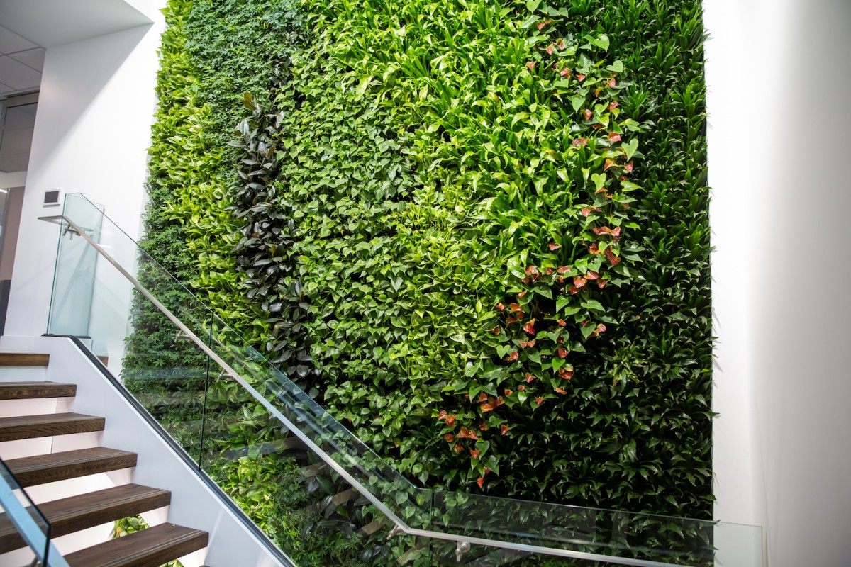 Multi-Story Plant Wall, Interior Plantscapes