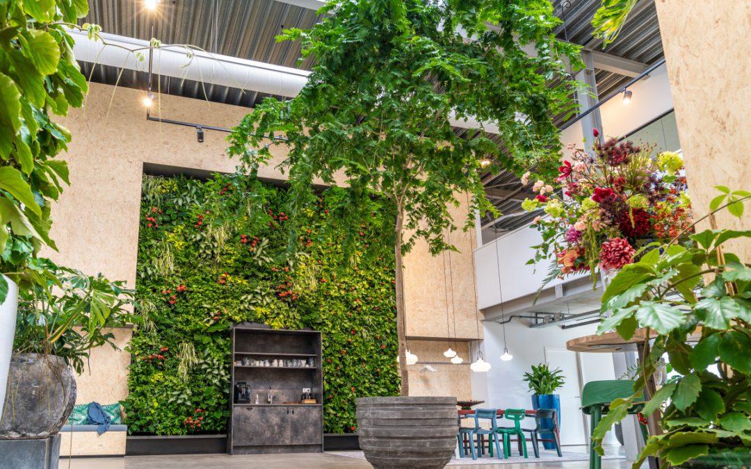The green inspiration center