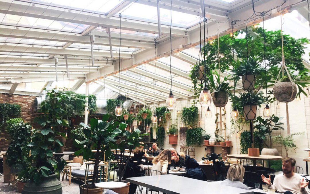 The Orangery Kafé magasinet in Gothenburg
