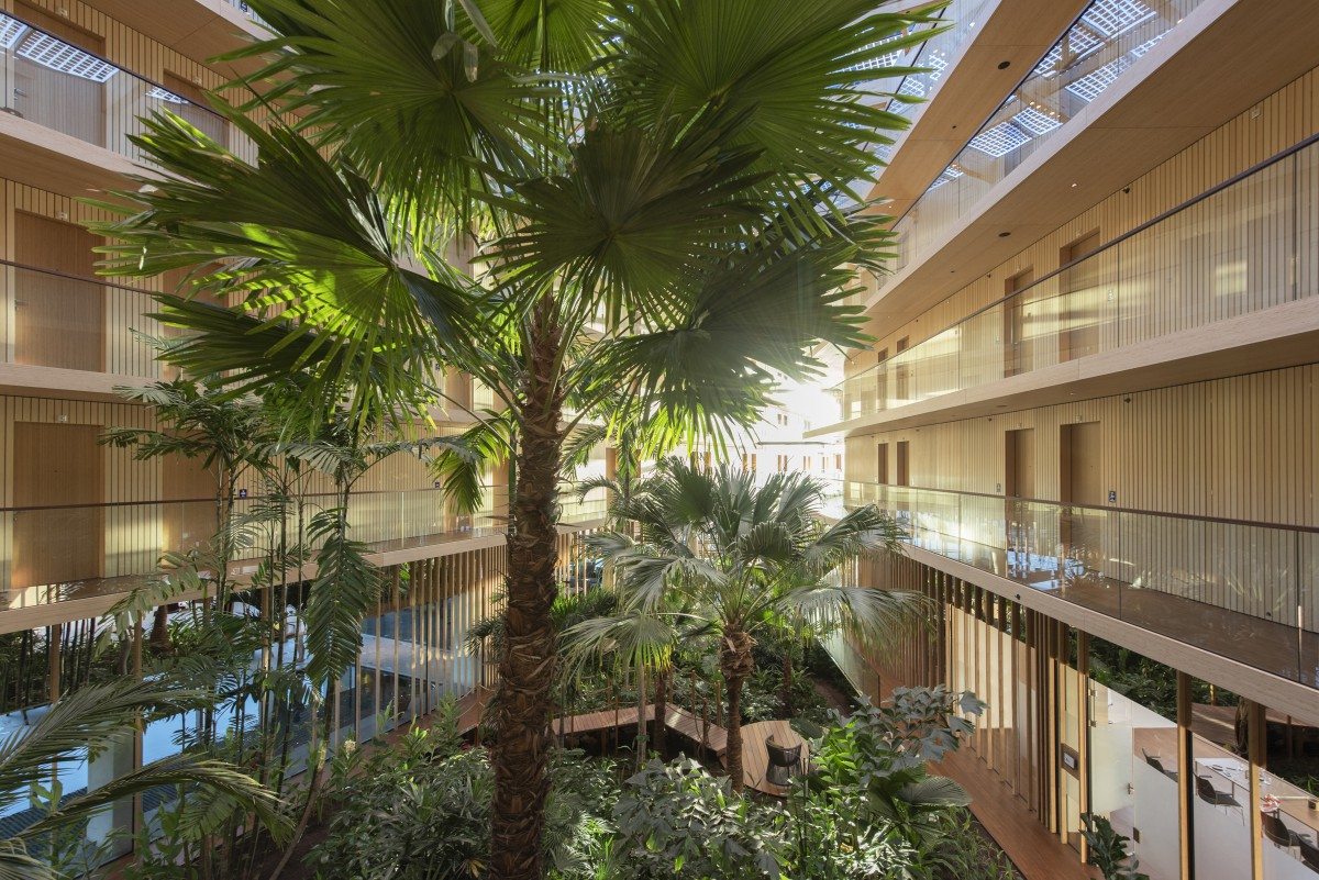 Interior Landscaping Hotel Jakarta Copijn palmtrees
