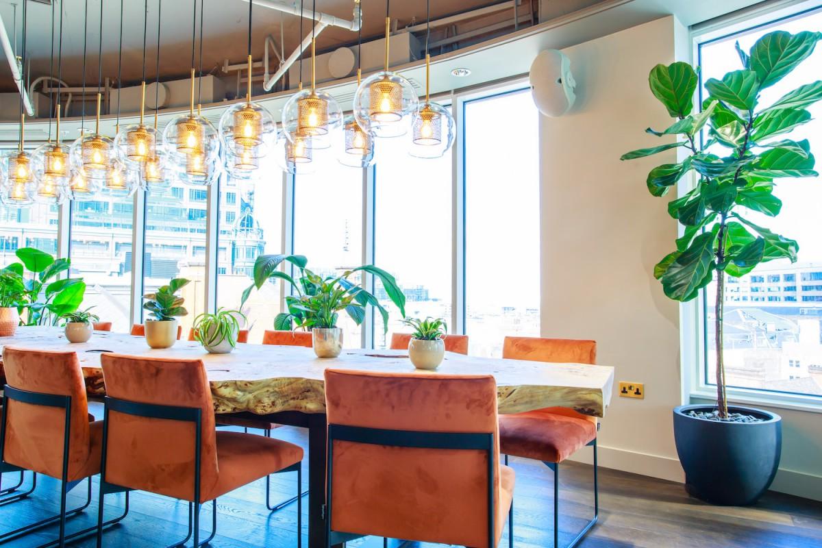 Plant Designs Uncommon Cafe